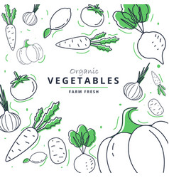farm fresh vegetables poster sketch style vector image