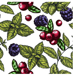 Seamless pattern with blackberries vector