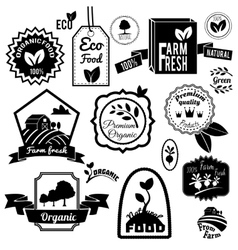 Eco labels black vector image vector image