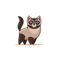 Siamese Cat Isolated on the White Background vector image vector image