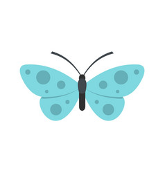 Butterfly icon flat style vector