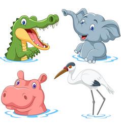 cartoon safari animal on water vector image