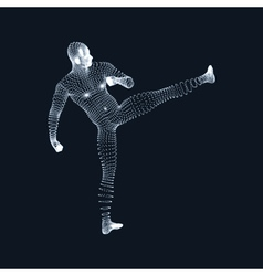Fighting Man 3D Model of Man Human Body Model vector