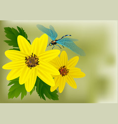 Flowers and dragonfly vector