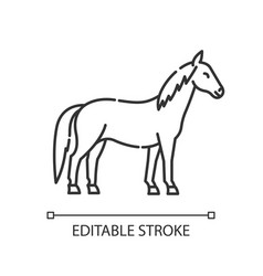 Horse pixel perfect linear icon vector