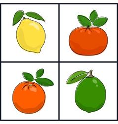 LemonOrangeMandarinLime vector