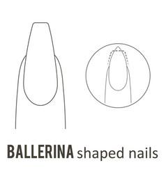 Nail shape ballerina vector