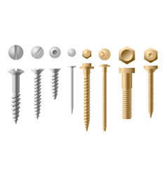Set of screws different types vector