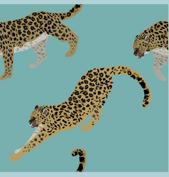two leopards on a delicate blue background vector image