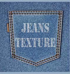 back jeans pocket vector image