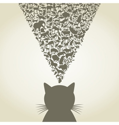Cat6 vector image