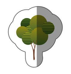 sticker beautiful tree icon vector image