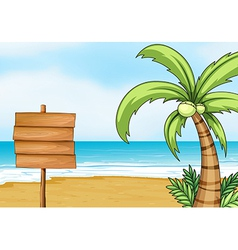 Signpost and coconut tree vector image