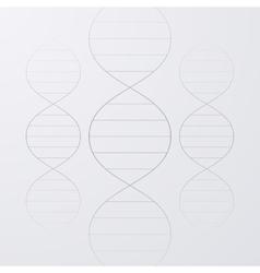 A DNA vector