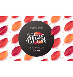 autumn 167 vector image