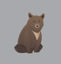 Cute bear grizzly black vector