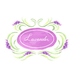Lavender flowers background design vector