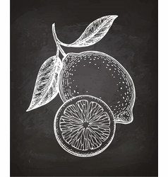 lemon sketch on chalkboard vector image
