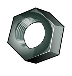 the single metallic nut isolated on a white vector image