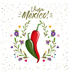 Viva mexico colorful poster with chili peppers vector