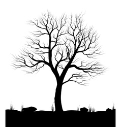 Landscape with old tree and grass over white vector image vector image