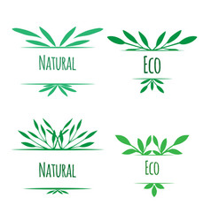 frame of green leaves with place for text natural vector image