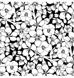 graphic sakura pattern vector image