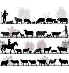 Herd of sheep vector