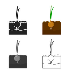 Onion icon cartoon single plant icon from the big vector