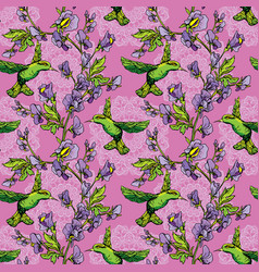 Seamless pattern colibri birds and flowers on vector