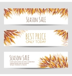 set headers banners with autumn leaves vector image
