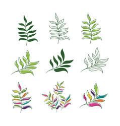 tropical leaf icon design vector image