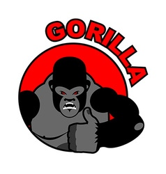 Gorilla shows well Sign all right Thumbs up Hand vector image