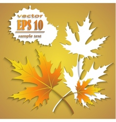 beautiful background with autumn leaves vector image