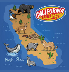 California map of animal wildlife vector