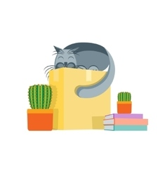 Cardboard Box and a Cat Concept Of Moving vector image vector image