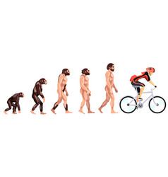 Evolution of the cyclist vector