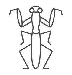 Mantis thin line icon insects concept beetle vector
