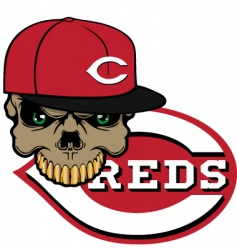 reds baseball vector image