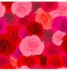 rose wallpaper pattern vector image vector image