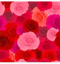 Rose wallpaper pattern vector