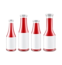Set of Glass Red Ketchup Bottles with labels vector