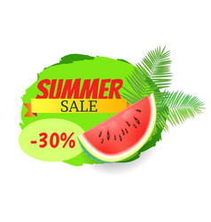 Summer watermelon discount vector