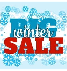 Sale poster with BIG WINTER SALE text Advertising vector image vector image