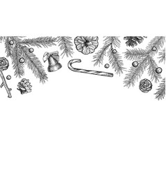 background with hand drawn fir tree branch and vector image