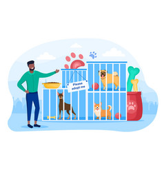 male character is working in dog shelter vector image