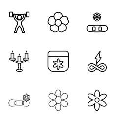ornament icons vector image