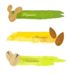 Set nuts banners vector