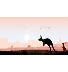 Silhouette kangaroo in the evening vector image
