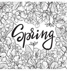 spring text hand lettering with hand drawn vector image